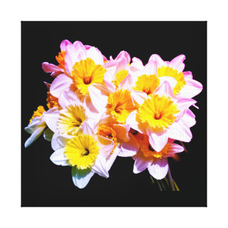 Frühlings-gelbe Narzissen-Quadrat-Leinwand Leinwanddruck