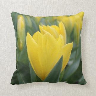 Frühlings-gelbes Tulpe-Wurfs-Kissen Kissen