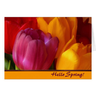 Frühlings-Mitteilungskarten Karte