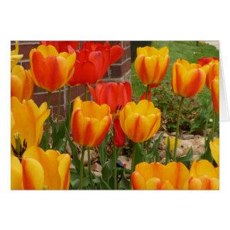 Frühlings-Tulpe-Karte Karte