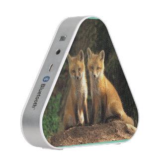 Fuchs-Lautsprecher Bluetooth Lautsprecher