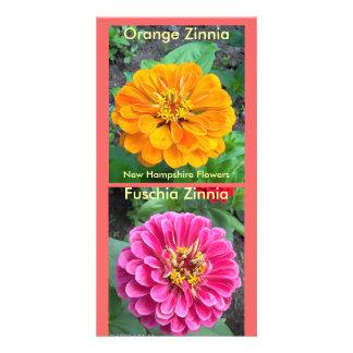 Fuchsia Zinnia-5-20-09, Zinnia-7-07 orange-foncé… Cartes Avec Photo