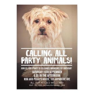 FULL BLEED PHOTO DOG'S PARTY INVITE 12,7 X 17,8 CM EINLADUNGSKARTE