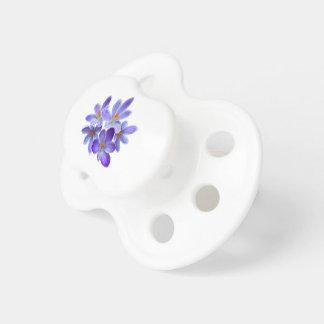 Fünf violette Krokusse 05,0, Frühlingsgrüße Schnuller