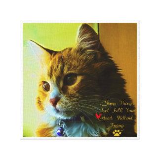 Für die Liebhaber der Katze Leinwanddruck