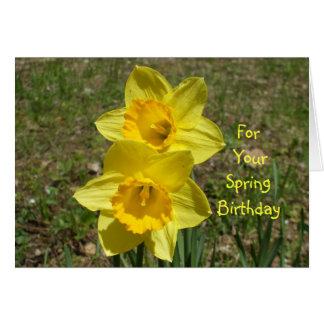 Für Ihre Frühling Geburtstag-Narzissen Karte