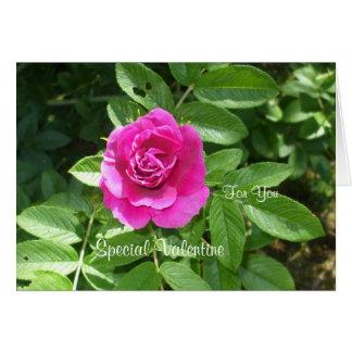 Für Sie eine Valentine-Rose Karte