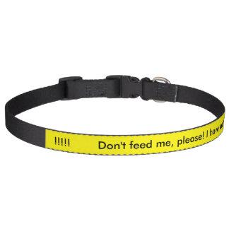 Füttern Sie mich nicht, bitte! Ich habe eine Haustierhalsbänder