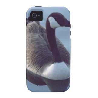 Galant Gans Vibe iPhone 4 Cover