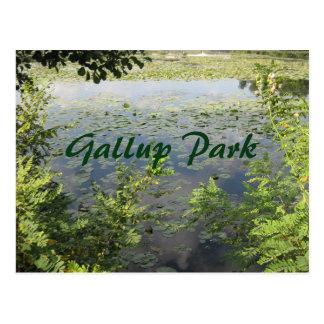 Gallup parken in Ann Arbor Postkarte