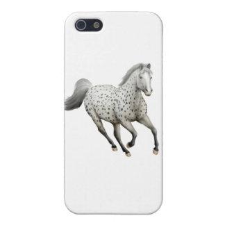 Galoppierender Leopardappaloosa-PferdiPhone Fall iPhone 5 Schutzhüllen