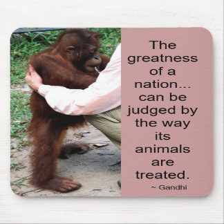 Gandhi Zitat Tiere
