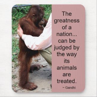 Gandhi Zitat: Tiere Mauspad
