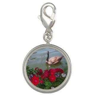 Gans in einem Rosen-Teich-Charme Charm