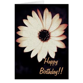 Gänseblümchen auf lila Geburtstags-Karte Karte