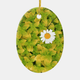 Gänseblümchen-Blume, die für den Sun erreicht Ovales Keramik Ornament