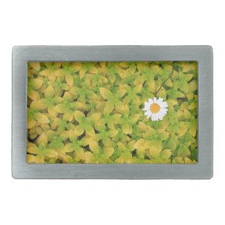 Gänseblümchen-Blume, die für den Sun erreicht Rechteckige Gürtelschnalle