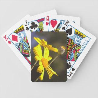 Gänseblümchen Pokerkarten
