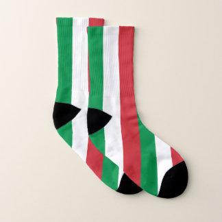 Ganz über Druck-Socken mit Flagge von Italien Socken