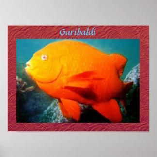 Garibaldi Plakat-Druck