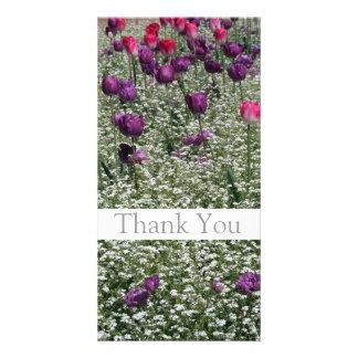 Garten 1 - Tulpen - danke Foto-Karten -1- Fotokartenvorlagen