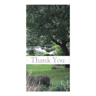 Garten 6 - Baum - danke Foto-Karten -1- Bild Karte