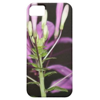 Garten-Blume Etui Fürs iPhone 5