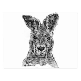 gday Kamerad des Kängurus Postkarte