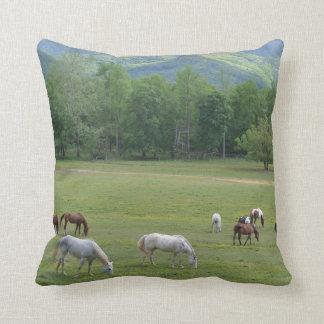 Gebirgszug-Pferde, die dekoratives Kissen weiden