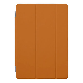 Gebrannte Orange iPad Pro Cover