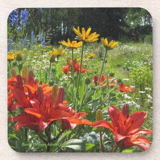 Gebrannter orange asiatischer Lilien-Sommer-Garten Getränkeuntersetzer