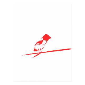 Gebürsteter Vogel (rot) Postkarte