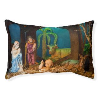 Geburt Christisszene Haustierbett