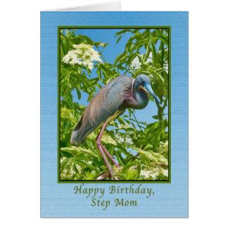 Geburtstag, Schritt-Mamma, Tricolored Reiher in Karte