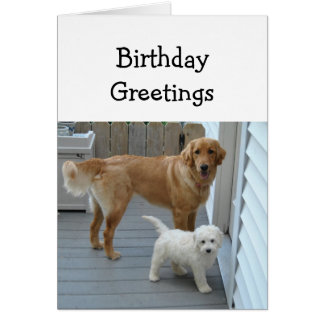 Geburtstags-Grüße von beiden von uns Karte