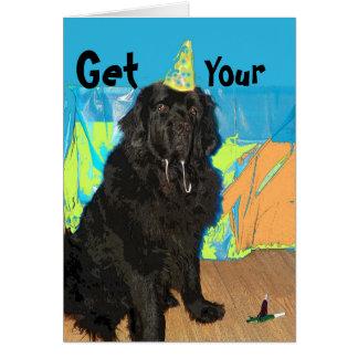 Geburtstags-Karte ~ Neufundland-Hund Karte