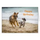 Geburtstags-Karten-Schäferhund-Hund Cockerspaniel Karte