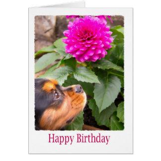 Geburtstags-Wünsche mit Dahlie-und Spaniel-Hund Karte