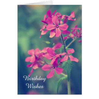 Geburtstags-Wünsche, Vintager rosa Grußkarte