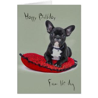 Geburtstagsgrüße vom Hund Karte