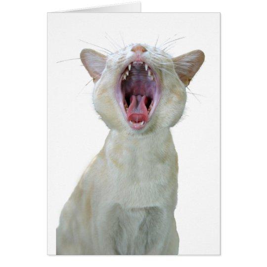 Geburtstagskarte der birmanischen Katze Karte