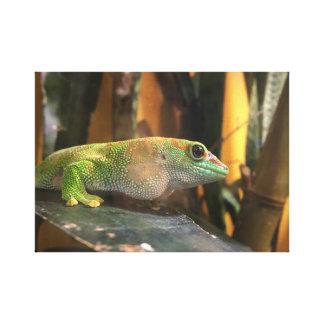 Gecko-Leinwand Leinwanddruck