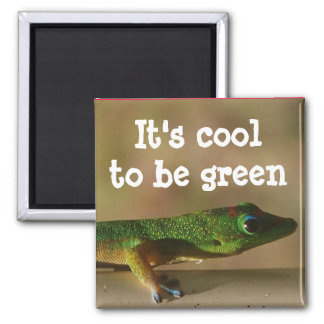 Gecko vert frais magnet carré