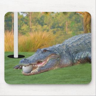 Gefährliche Lügen-Golf spielender Alligator Mauspad