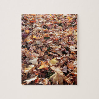 Gefallenes Herbst-Blätter - schwieriges