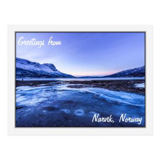 Gefrorener Strom auf den Narvik Ufern Postkarte