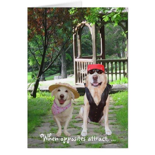 Gegenteile ziehen lustige Hunde an Karte