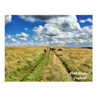 Gehen mit den Wolken! Postkarte