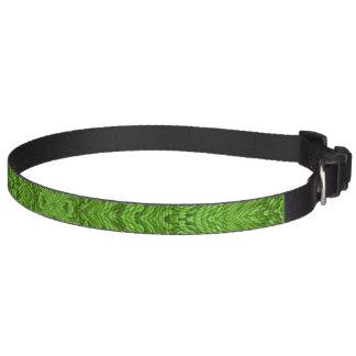 Gehende grüne bunte Hundehalsbänder