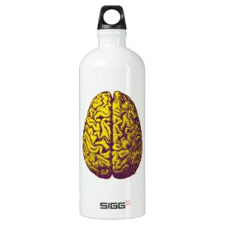 Gehirn-Frost Wasserflasche